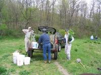 Shrub Island planting volunteer day