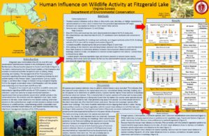 Wildlife Activity Poster by Elizabeth Sowers